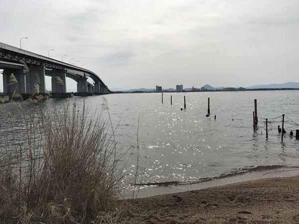 琵琶湖バス釣りポイント 米プラ
