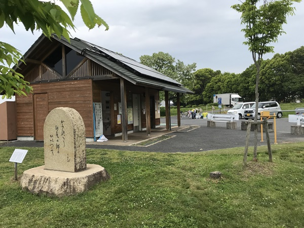 琵琶湖バス釣り