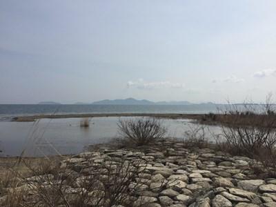 琵琶湖バス釣りポイント 和邇川