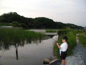 神戸バス釣り
