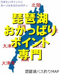 琵琶湖バス釣りおかっぱりポイント