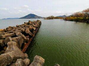 琵琶湖バス釣り湖岸緑地岡山園地