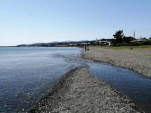 琵琶湖バス釣りポイント_今津川